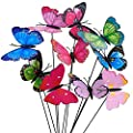 Colourful Garden Butterflies on Sticks x10. : everything 5 pounds (or less!)
