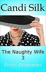 The Naughty Wife 3: Erotic Escapades