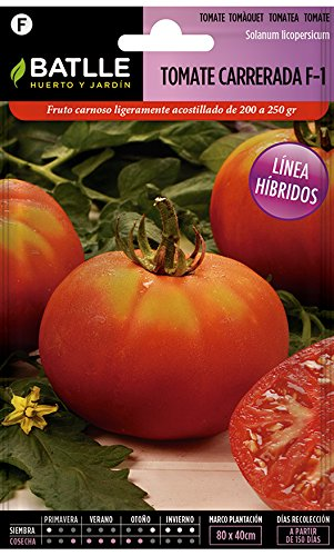 Semillas Hortícolas Híbridas - Tomate Carrerada Hibrido F-1 - Batlle