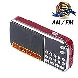 CSMARTE Transportables AM/UKW-Radio mit Mini-USB-Anschluss, Mp3-Musik-Player, Lautsprecher-Unterstützung, Mikro-SD/TF-Karte
