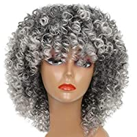 Ingrirt5Dulles Afro Grey Short Curly Wig Fashion Women Heat Resistant Hair Extension Hairpiece Grey