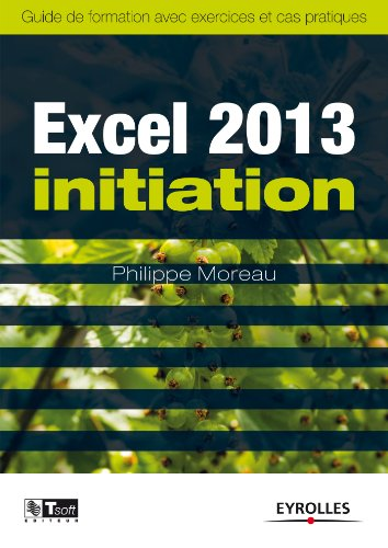 Excel 2013 - Initiation: Guide de format...