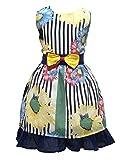Mädchen Kleid Blau Blume Bogen Binden Kinderkleider Hochzeit Maedchen Festkleider 104 110 116 122 128