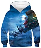 Ocean Plus Jungen Hoodie Tierdruck Kapuzenpulli mit Aufdruck Kapuzenpullover Kinder Sweatshirt Hooded Sweat (S (Körpergröße: 116-125cm), Weihnachtsmann Schlitten)