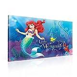 Disney Arielle die Meerjungfrau Leinwand Bilder (PPD663O1FW) - Wallsticker Warehouse - Size O1 - 100cm x 75cm - 230g/m2 Canvas - 1 Piece