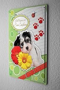 Cartello Targa In Metallo Scudo Carta Di Compleanno Divertimento Fiori Congratulazioni cane Decorazione In Metallo 20X30 cm