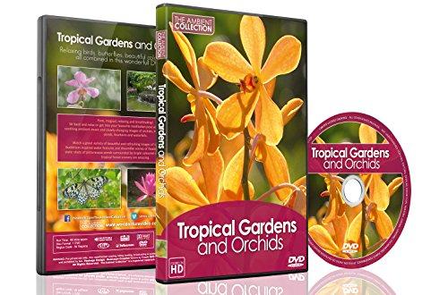 Natur DVD – Tropische Gärten und Orchideen und Schmetterlinge – Mit Musik und Naturgeräuschen 2016