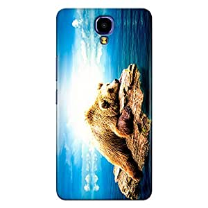 Infinix Note 4 Premium Stylish Printed Designer Hard Back Cover Case | Calm Bear on Wood | Nature | Animal | Sky | Scratch Proof | Lifetime Printing Guarantee | HD Printing Quality | Waterproof | Durable | Slim Light Weight | Matte Polycarbonate Plastic Case Cover | 3 Side Edge to Edge Printing - Crazyink
