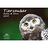 Tierzauber Eulen und Uhus · DIN A3 · Premium Kalender 2019 · Vögel · Vogel · Fliegen · Wald · Natur · Tiere · Geschenk-Set mit 1 Grußkarte und 1 Weihnachtskarte · Edition Seelenzauber
