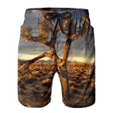 Photo de HOOTDYA Lonely Tree in The Desert Summer Mens Quick-Drying Surf Trunks Beach Shorts par HOOTDYA