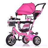 YLZT Carro pequeño Triciclo Interior y Exterior para niños/Cochecito y...