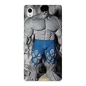 Enticing Blue Big Guy Back Case Cover for Xperia M4 Aqua