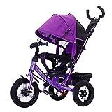 BAX T2 Airwheel Dreirad Violett mit Lenkung Sonnendach Luftreifen Lufträder Schieben
