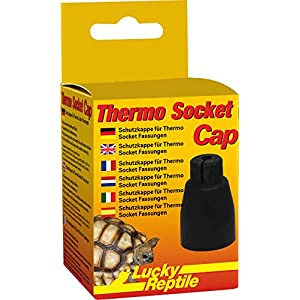 Lucky Reptile - Thermo Socket Cap