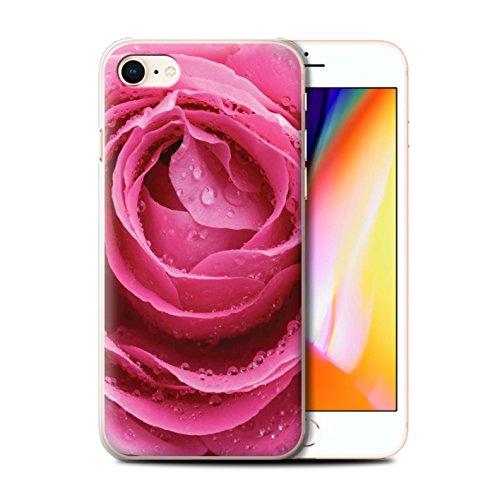 Stuff4 Hülle / Case für Apple iPhone 8 / Marienkäfer Fehler Muster / Englische Gärten Kollektion Pinke Rose