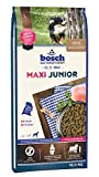 bosch 44016 Hundefutter Junior Bigger Breeds 15 kg