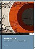 Bodenschätze: Veröffentlichungen des Sächsischen Staatsarchivs: Reihe A 11. Sächsische Bergreichtümer in Archivalien des Bergarchivs Freiberg