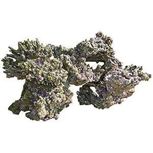 Haquoss Rock Viva in Harz 5, 47x 34x 26h cm