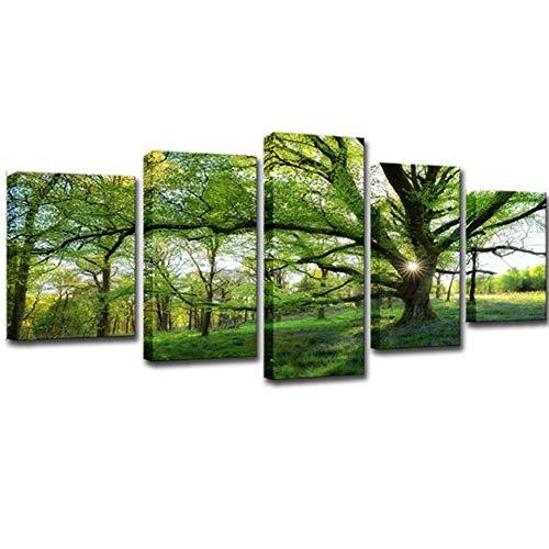 FEIFEIJ Leinwand Malerei ohne Rahmen HD Foto-Wand Kunst 5 Stücke Wald grüne Baum Landschaftsplakat Freizeit Hintergrund Wohnzimmer Esszimmer-Büro,S