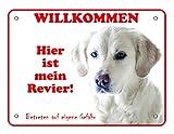 LUGUNO Hundeschild Labrador 20x15 cm Weiß Hier Ist Mein Revier Türschild Mit Eckbohrungen Geschenkidee Hund Aluminium Witziger Spruch Warnschild Warnung