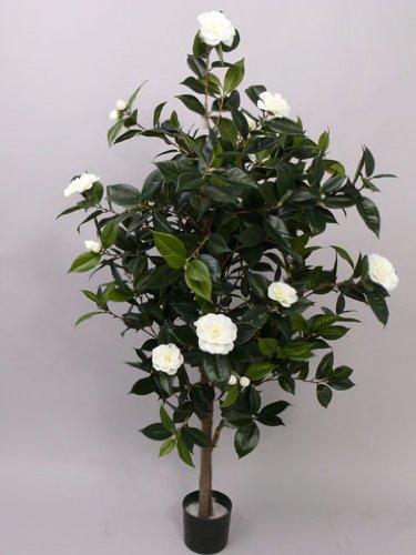 künstliche Kamelien- Camellia Japonica Kunstbaum, mit 786 Blättern, 20 weissen Blüten, Höhe 155cm – künstlicher Baum Kunstbäume