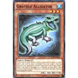 Yu Gi-Oh: docs-en033 1. Ed graydle Alligator Gemeinsame Karte – (Dimension Of Chaos Yu-Gi-Oh. Single Karte)