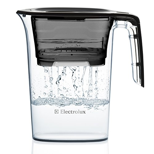 A photograph of Electrolux 2.3L