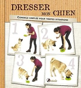 Dresser mon chien : Conseils simples pour toutes les situations