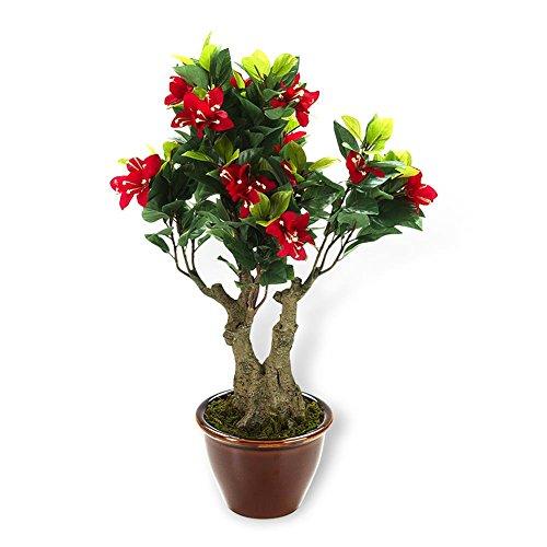 Maximex HC-Handel 936076 Kunst-Bonsai Bougainvillea 46 cm hoch im Keramiktopf, kräftig-rote Blüten, etwa 250 Blätter