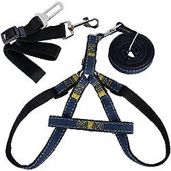 QUMAO- Arnés con Correa Ajustable para Perros Pequeños y Medianos + Cinturón de Seguridad para Llevar Perro en Coche - kit de Accesorio para Perro (XL)