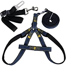 QUMAO- Arnés con Correa Ajustable para Perros+ Cinturón de Seguridad para Llevar Perro en Coche - kit de Accesorio para Perro (L)