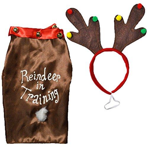 'Rentier in Training' Hund Neuheit Weihnachten Kostüm–Mantel und -