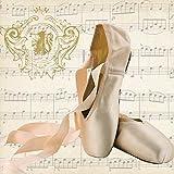 Paperproducts Design 1252467Concerto pour Ballet Boisson Serviettes en papier, Marron