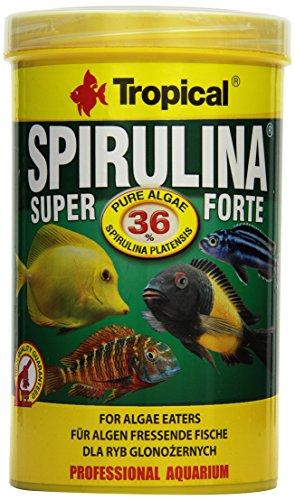 Tropical Super Spirulina Forte (36{476bb00eef9b70b434a6693b8c70fefabb5388a23eed492ea86bd21d21d364f7}) Flockenfutter, 1er Pack (1 x 1 l)