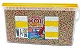 Tropical Koi Croissant Color, 1er Pack (1 x 5 l)