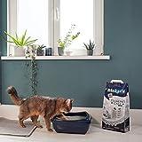 Biokat's Diamond Care Classic Katzenstreu / Hochwertige Klumpstreu für Katzen mit Aktivkohle und Aloe Vera - 6