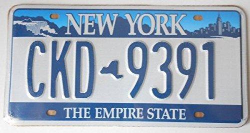 Fabbri US-Kennzeichen, Bundesstaat New York, Nachbildung, Maße: 31x 16cm