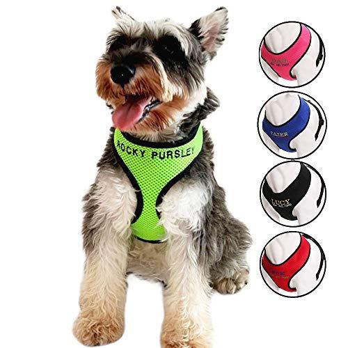Oncpcare Hundegeschirr mit Name, bestickter Name, Telefonnummer, Haustiergeschirr, personalisiertes ID-Kragen, weiches Netz, gepolstertes Halsband für Hunde -