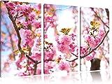 Schöne Kirschblüten 3-Teiler Leinwandbild 120x80 Bild auf Leinwand, XXL riesige Bilder fertig gerahmt mit Keilrahmen, Kunstdruck auf Wandbild mit Rahmen, gänstiger als Gemälde oder Ölbild, kein Poster oder Plakat