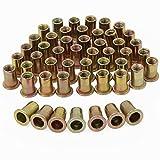 HSeaMall - Set di 50 dadi rivettati M6 placcati in acciaio al carbonio