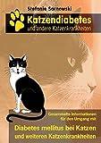 Katzendiabetes und andere Katzenkrankheiten: Alle wichtigen Informationen für den Umgang mit Diabetes mellitus bei Katzen