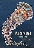 Wunderwesen aus der Tiefe. Ernst Haeckel: Das Pop-up-Buch