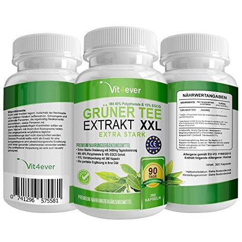 Grüner Tee Extrakt XXL