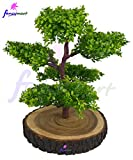 Thefancymart Artificial Bonsai Green Tre...