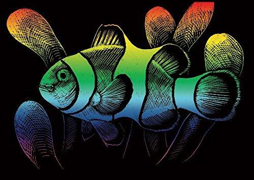 La Fourmi Kratzkarte, Mini, 12,5 x 17,5 cm, Regenbogenfarben Clown Fisch -