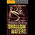 Shallow Waters (Detective Hannah Robbins Crime Series Book 1)