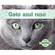 SPA-GATO AZUL RUSO (RUSSIAN BL (Gatos/ Cats)