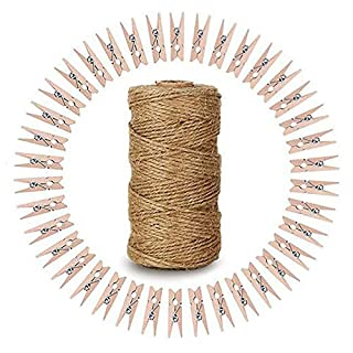 Jute String,328 Feet Jute Twine,2-PLY Craft String with 100 PCS Mini Wooden Pegs Clips, Natural Wooden Photo Clips,Mini Clothespins,Craft Pegs for Photos