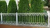 Schmiedeeisen Eisen Zaun Metall Zaunelement Monaco-Z100/300 Zink Feuerverzinkt