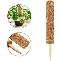 Easy-topbuy Soportes para Plantas, Palo De Fibra De Coco Plantas Trepadoras Guía para Plantas Trepadoras De Jardín, 50/60/70/80CM